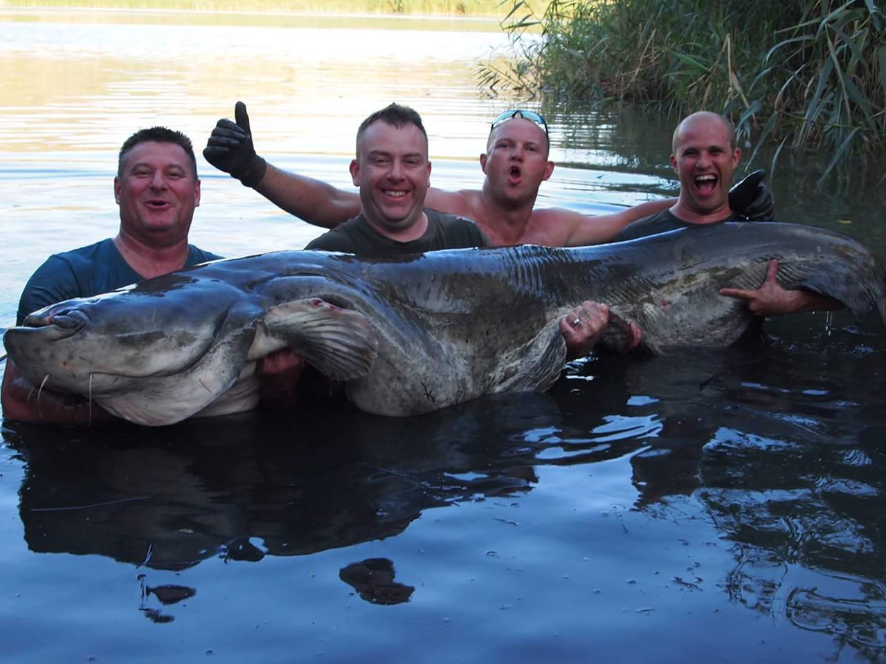 Monster Catfishing Holiday Packages in Spain